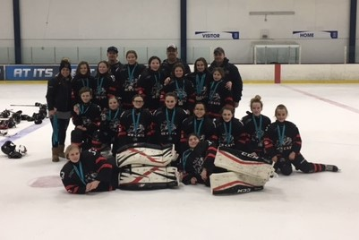 2018-19_d_Peewee_B_-_Silver_-_Scarborough_Tournament_Jan_2019.jpg