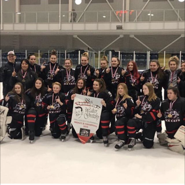 2018-19_k_Midget_B_GOLD_Walter_Gretzky_Tournament_Feb_2019.png