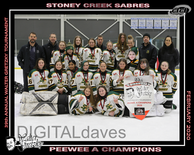 Peewee_A_GOLD_Stoney_Creek_Sabres.jpg