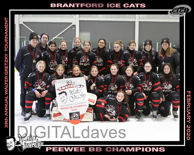 Peewee_BB_GOLD_-_Brantford_Ice_Cats.jpg
